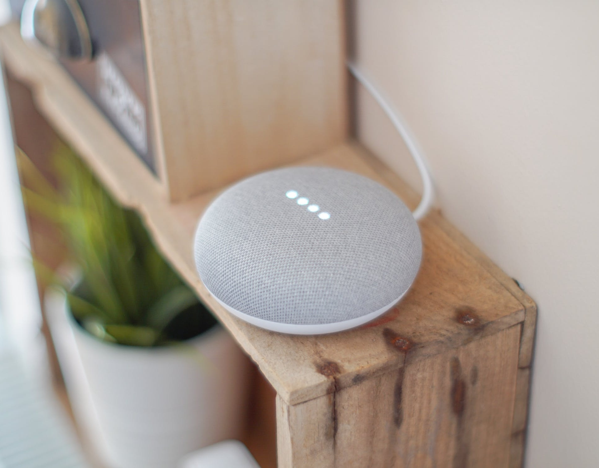 voice search google home